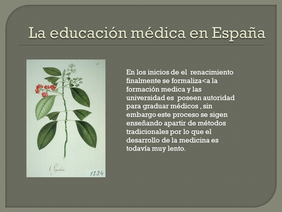La educación médica en España