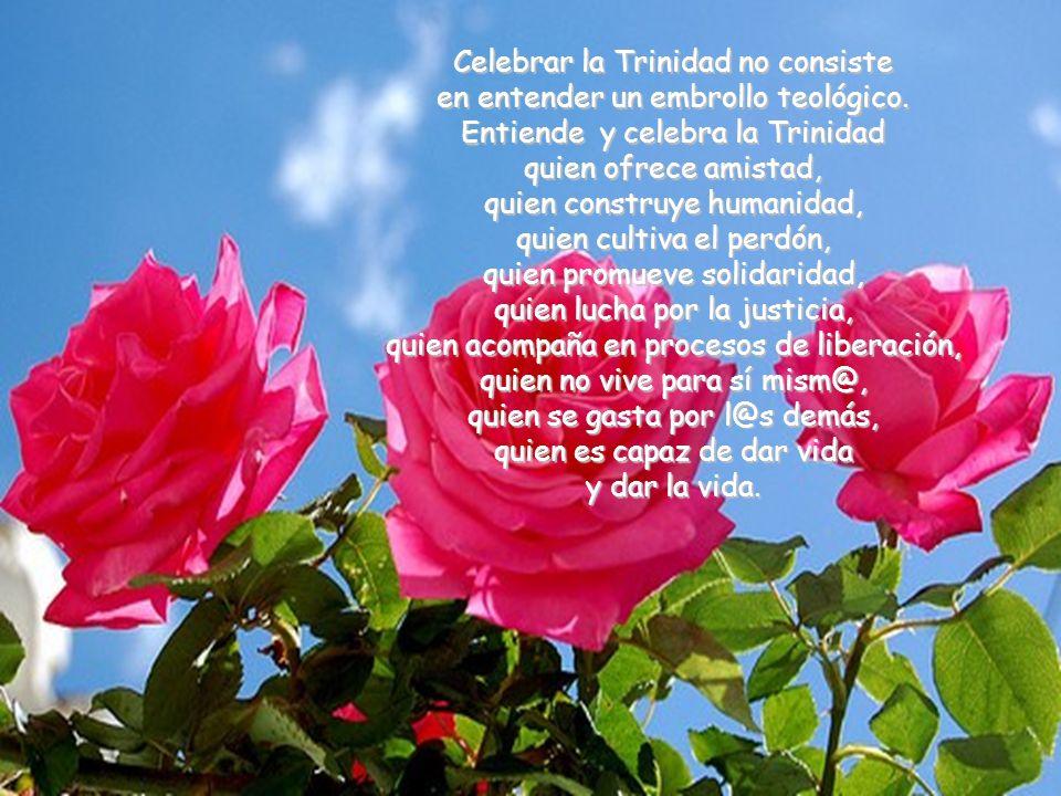 Celebrar la Trinidad no consiste en entender un embrollo teológico
