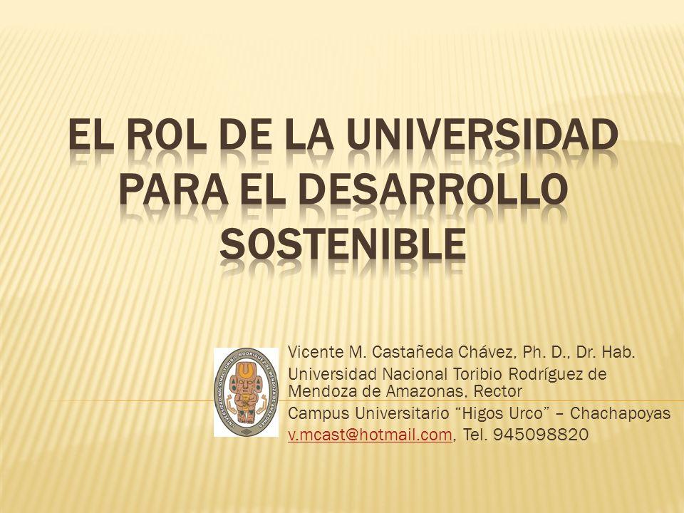 El rol de la universidad para el desarrollo sostenible