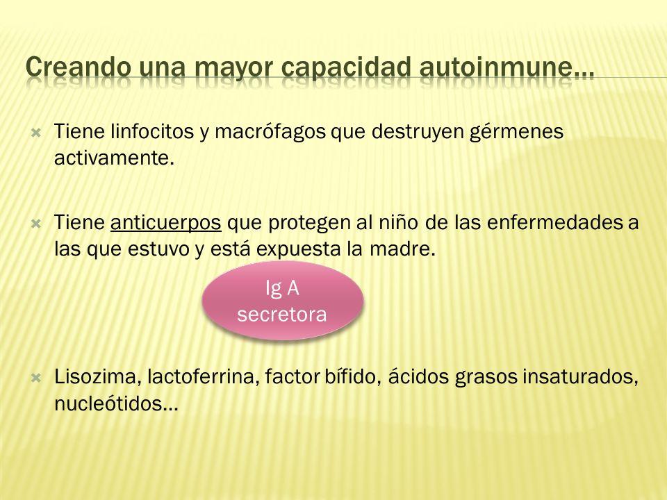 Creando una mayor capacidad autoinmune…