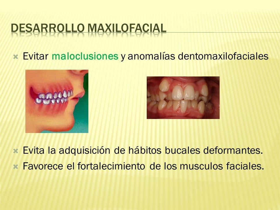 Desarrollo maxilofacial