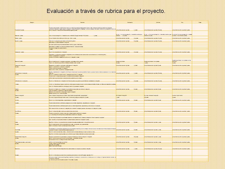 Evaluación a través de rubrica para el proyecto.
