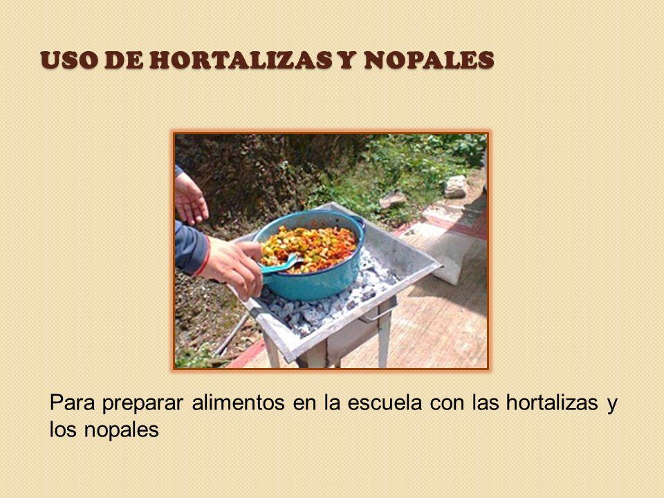 Uso de hortalizas y nopales