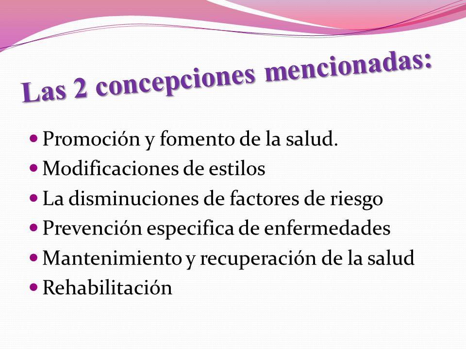 Las 2 concepciones mencionadas: