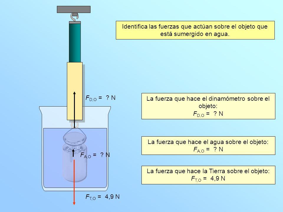 La fuerza que hace el dinamómetro sobre el objeto: FD,O = N