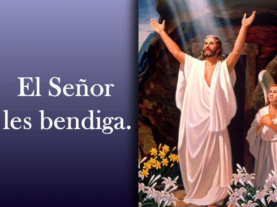 El Señor les bendiga.