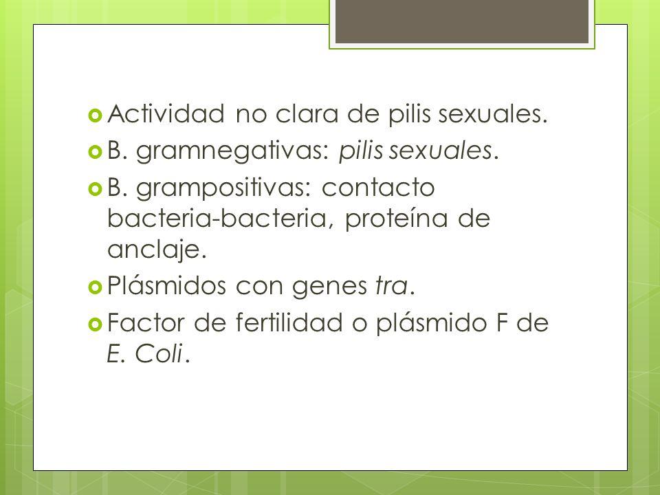 Actividad no clara de pilis sexuales.