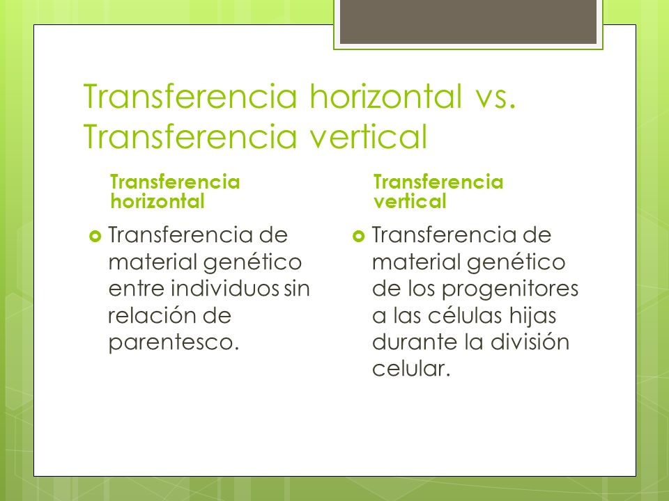 Transferencia horizontal vs. Transferencia vertical