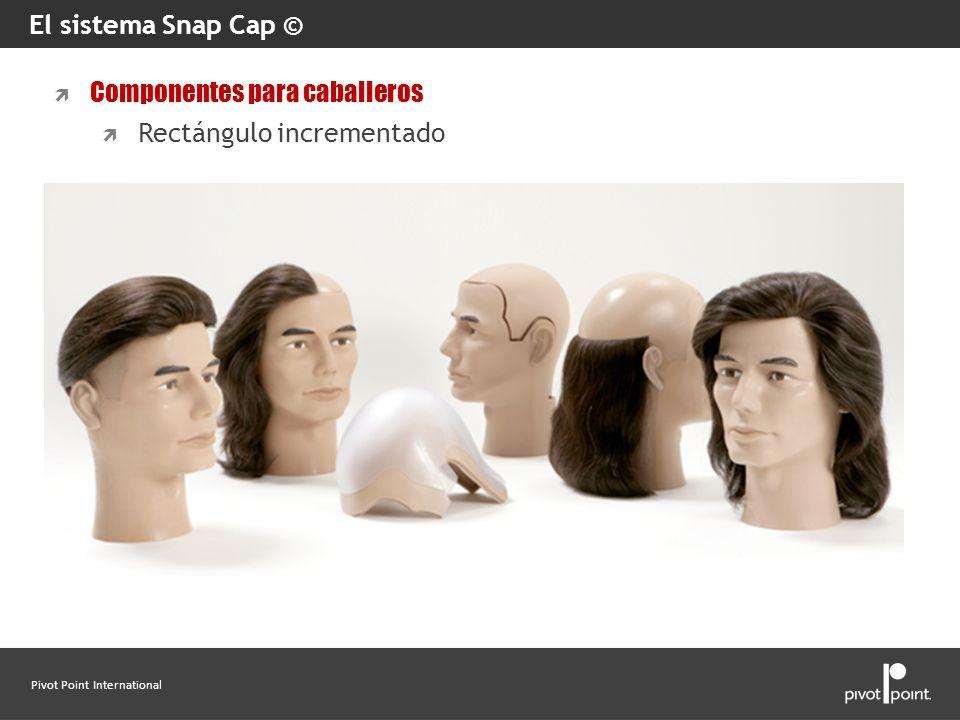 El sistema Snap Cap © Componentes para caballeros Rectángulo incrementado