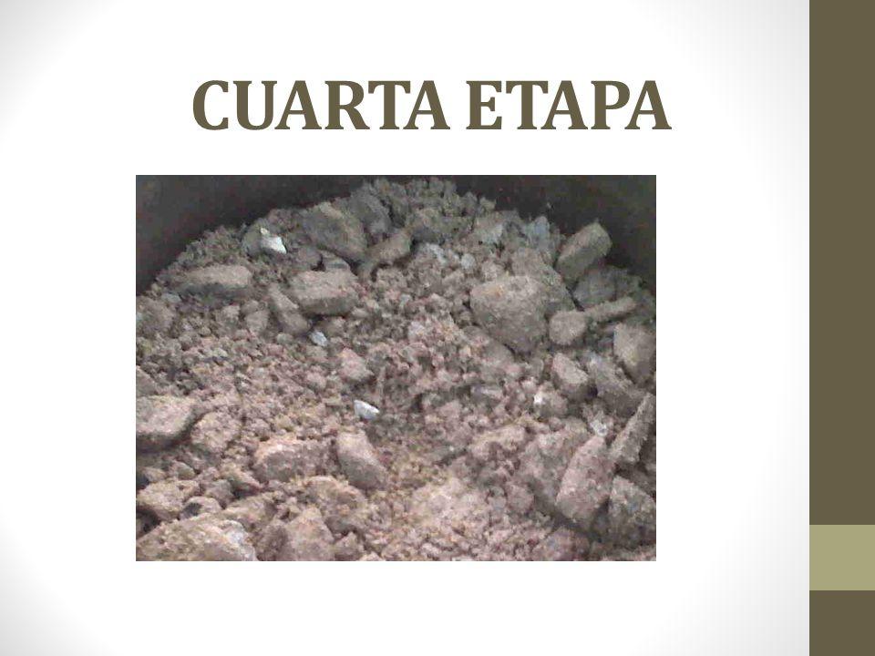 CUARTA ETAPA