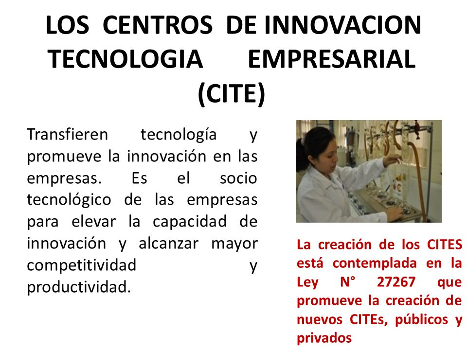 LOS CENTROS DE INNOVACION TECNOLOGIA EMPRESARIAL (CITE)