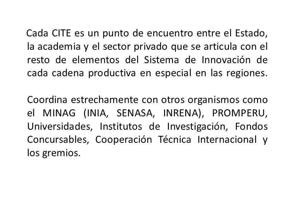Cada CITE es un punto de encuentro entre el Estado, la academia y el sector privado que se articula con el resto de elementos del Sistema de Innovación de cada cadena productiva en especial en las regiones.