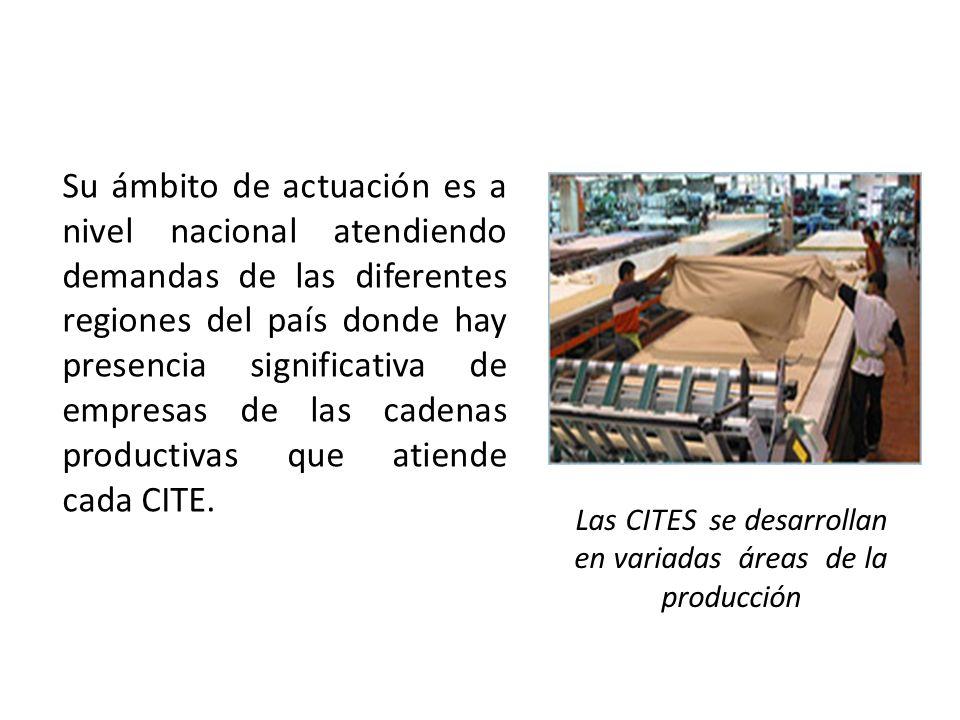 Las CITES se desarrollan en variadas áreas de la producción