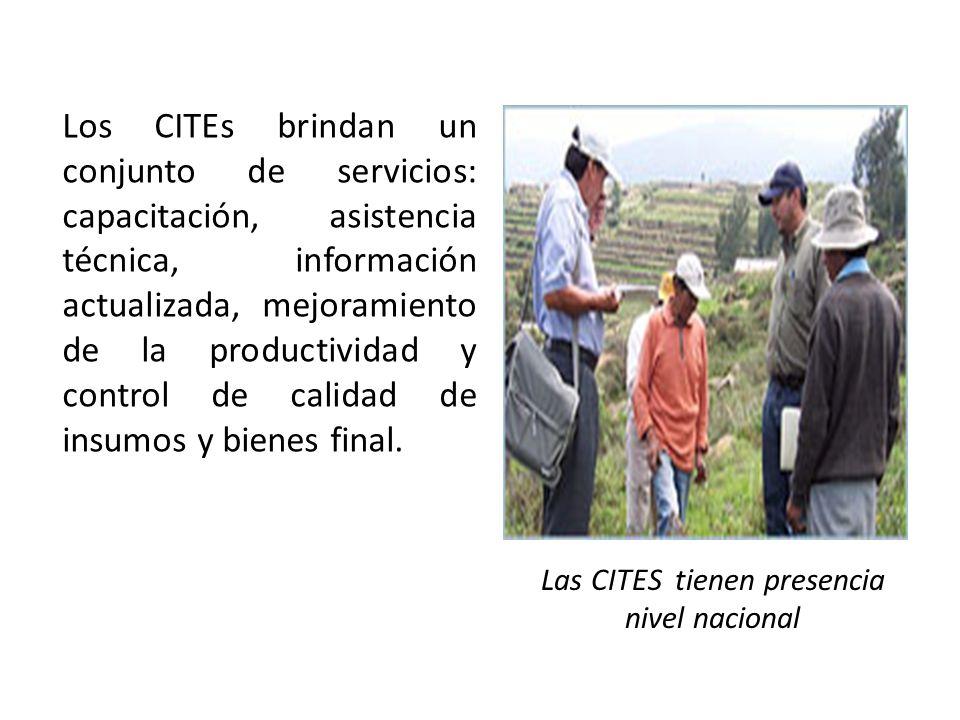 Las CITES tienen presencia nivel nacional