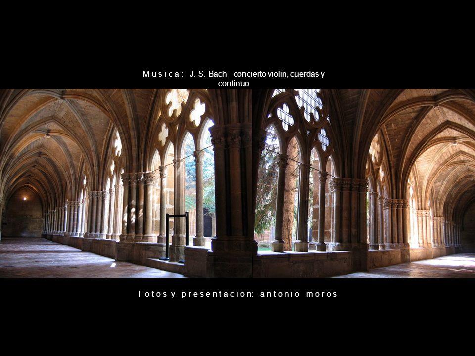 M u s i c a : J. S. Bach - concierto violin, cuerdas y continuo