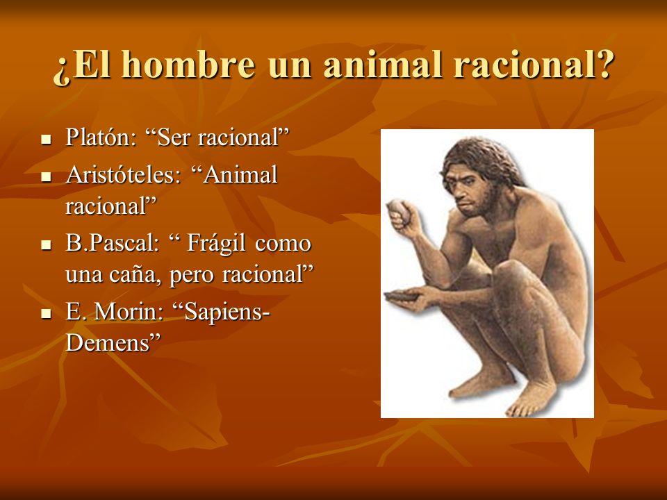 ¿El hombre un animal racional