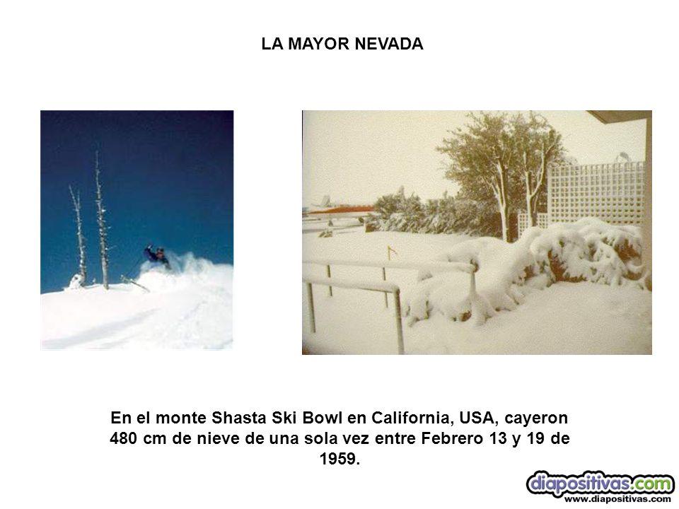 LA MAYOR NEVADA En el monte Shasta Ski Bowl en California, USA, cayeron 480 cm de nieve de una sola vez entre Febrero 13 y 19 de 1959.
