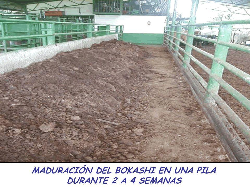 MADURACIÓN DEL BOKASHI EN UNA PILA