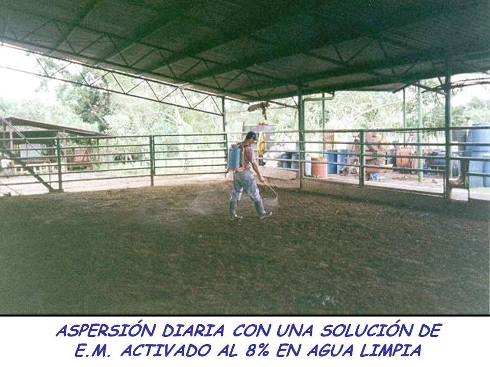 ASPERSIÓN DIARIA CON UNA SOLUCIÓN DE