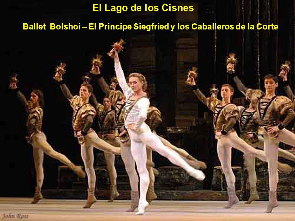 El Lago de los Cisnes Ballet Bolshoi – El Principe Siegfried y los Caballeros de la Corte