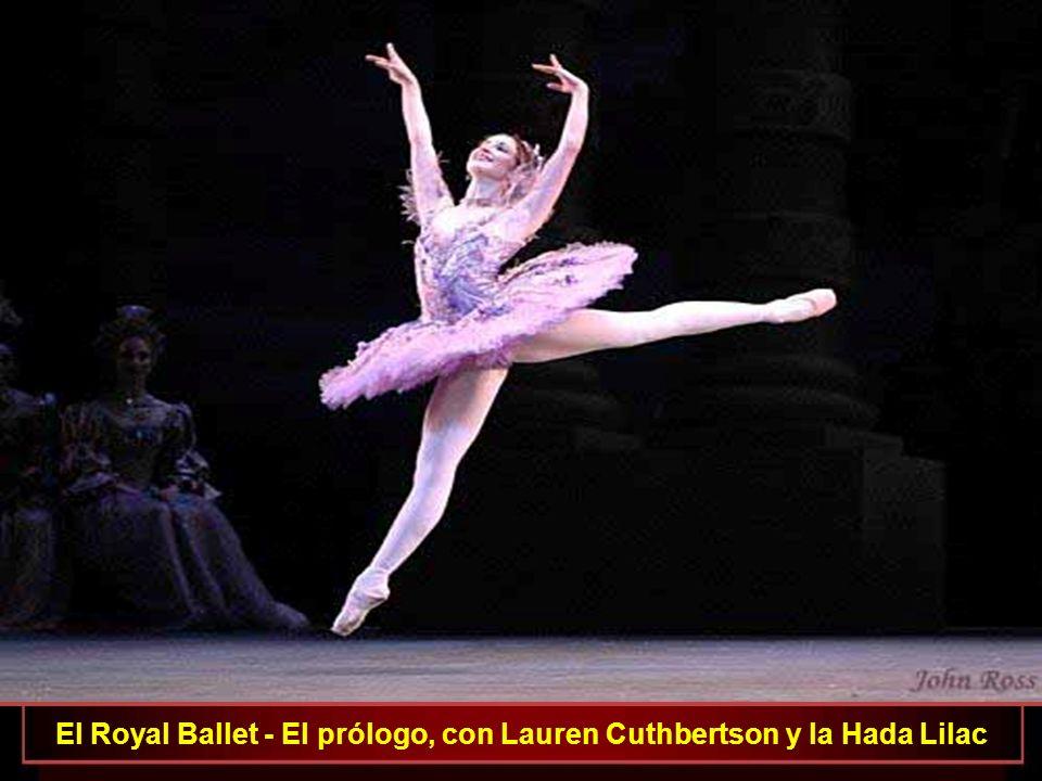 El Royal Ballet - El prólogo, con Lauren Cuthbertson y la Hada Lilac
