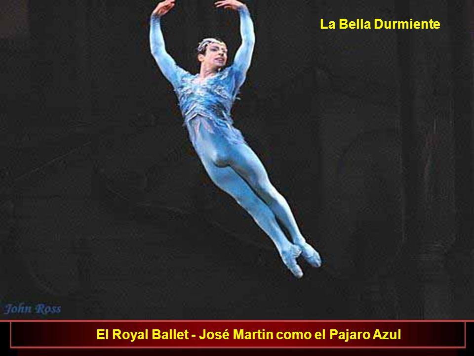 La Bella Durmiente El Royal Ballet - José Martin como el Pajaro Azul
