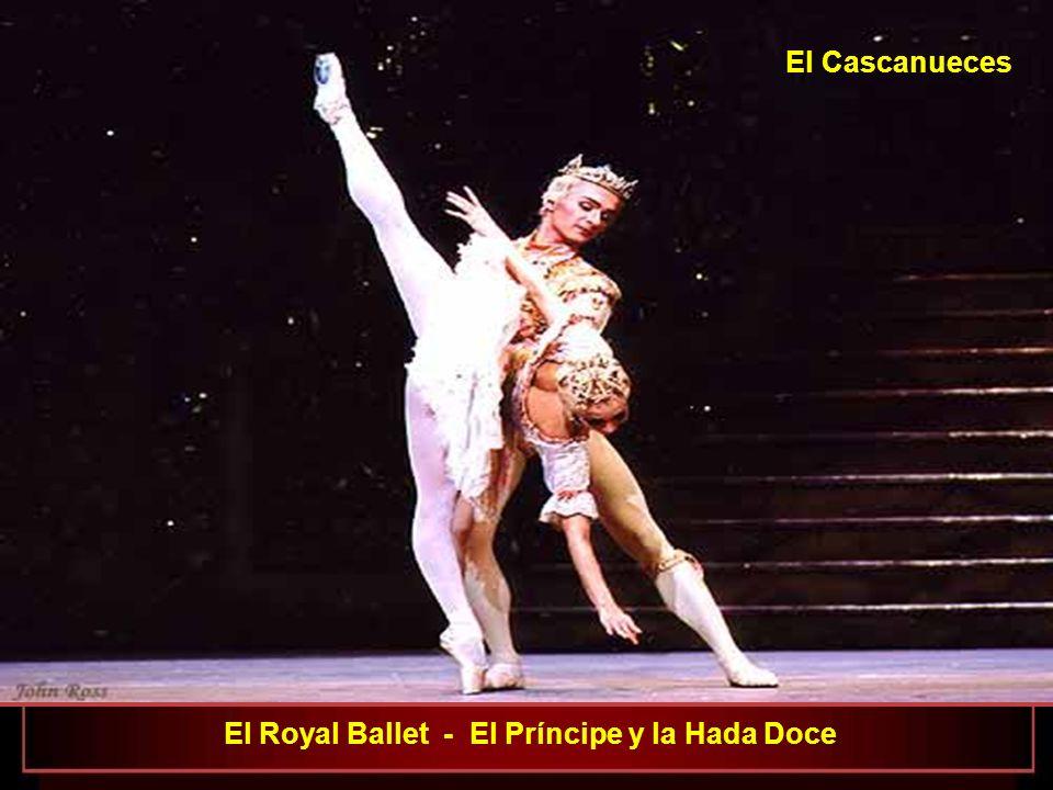 El Royal Ballet - El Príncipe y la Hada Doce