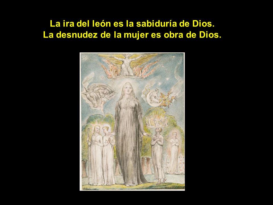 La ira del león es la sabiduría de Dios
