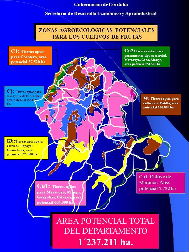 ZONAS AGROECOLOGICAS POTENCIALES PARA LOS CULTIVOS DE FRUTAS