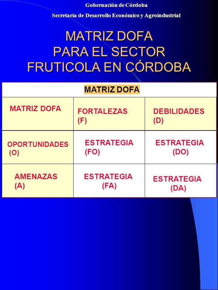 MATRIZ DOFA PARA EL SECTOR FRUTICOLA EN CÓRDOBA