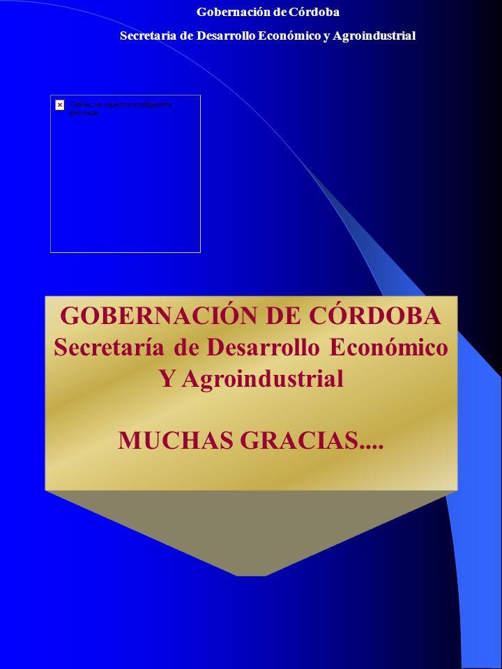 GOBERNACIÓN DE CÓRDOBA Secretaría de Desarrollo Económico