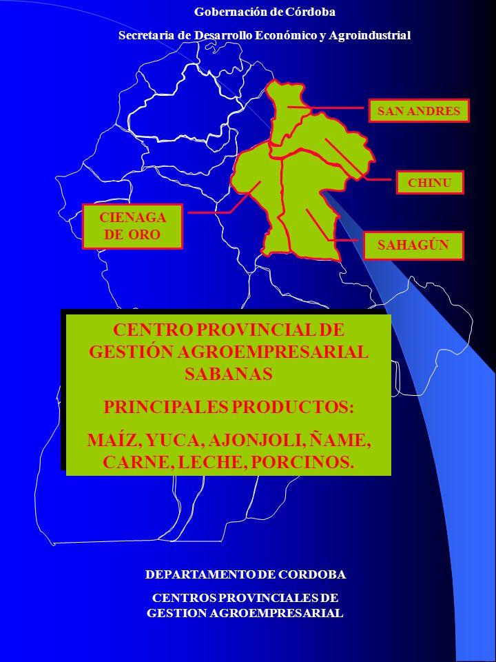 CENTRO PROVINCIAL DE GESTIÓN AGROEMPRESARIAL SABANAS
