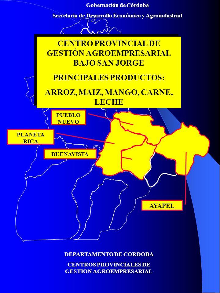 CENTRO PROVINCIAL DE GESTIÓN AGROEMPRESARIAL BAJO SAN JORGE