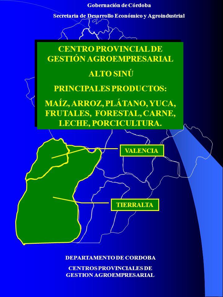 CENTRO PROVINCIAL DE GESTIÓN AGROEMPRESARIAL ALTO SINÚ