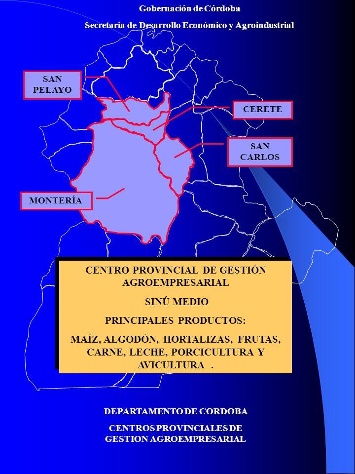 CENTRO PROVINCIAL DE GESTIÓN AGROEMPRESARIAL SINÚ MEDIO