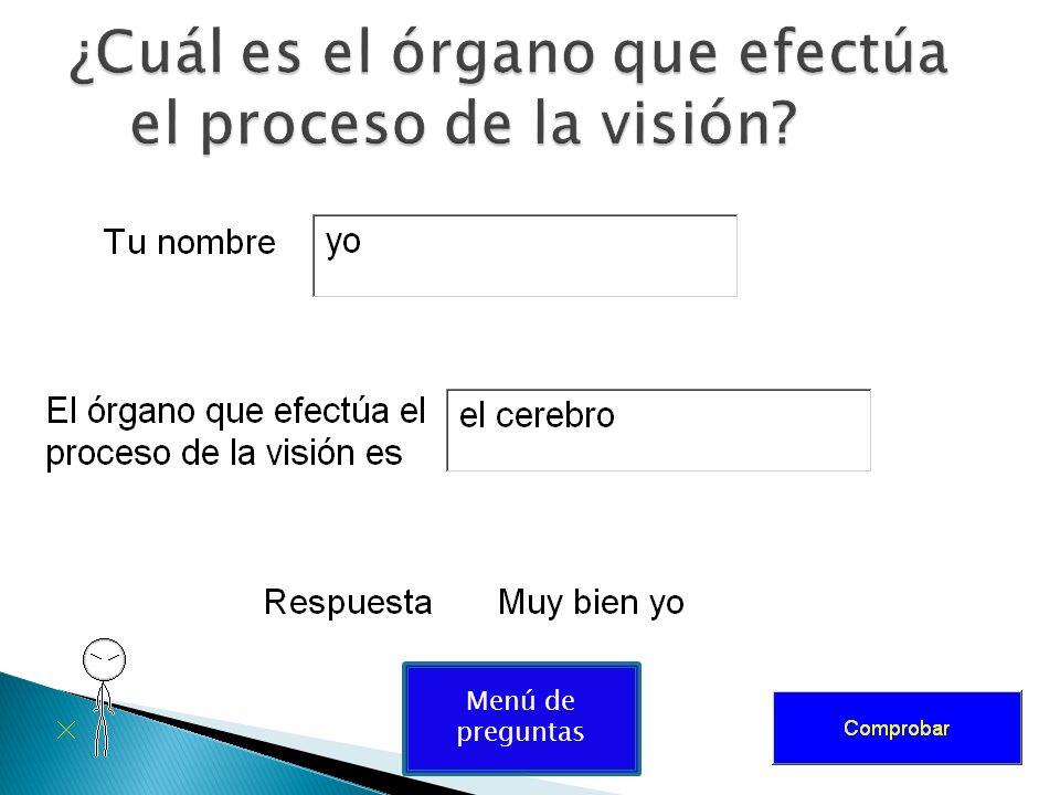 ¿Cuál es el órgano que efectúa el proceso de la visión