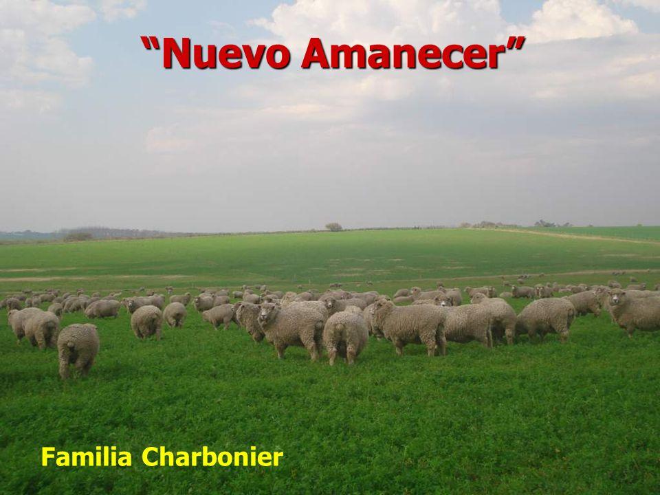 Nuevo Amanecer Familia Charbonier