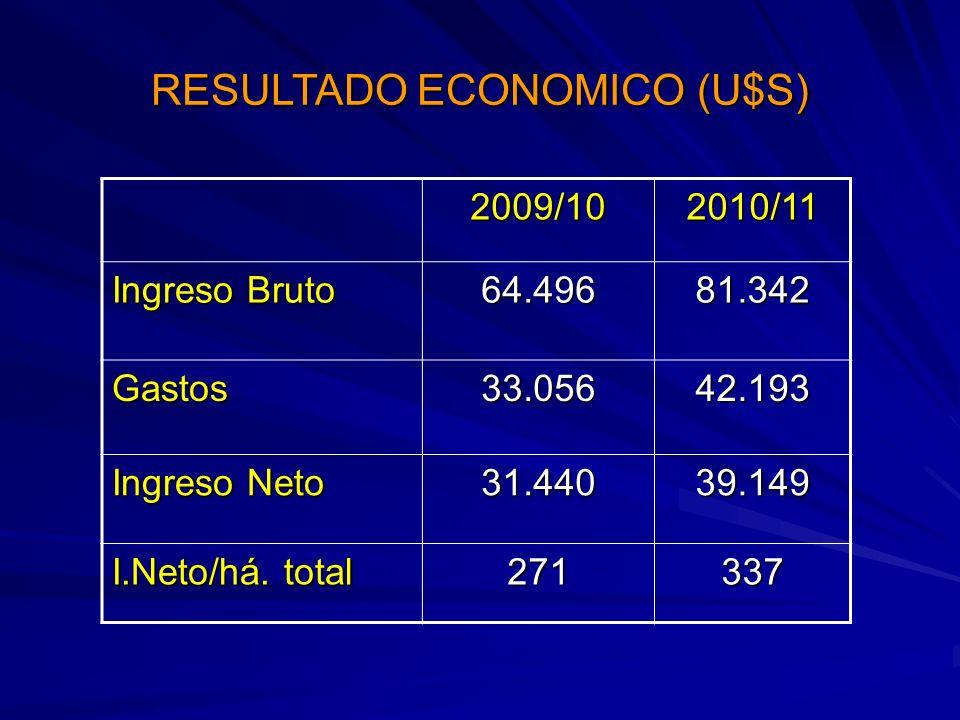 RESULTADO ECONOMICO (U$S)