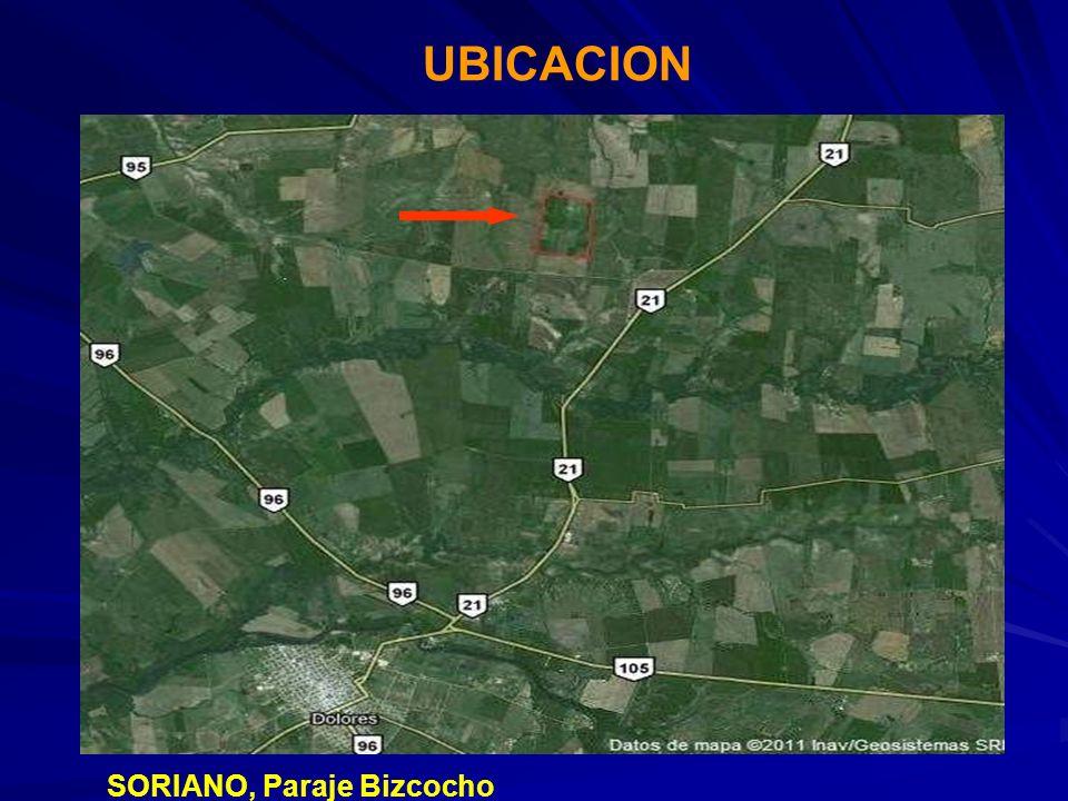 UBICACION SORIANO, Paraje Bizcocho