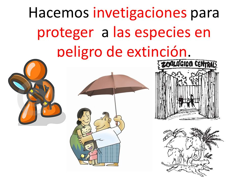 Hacemos invetigaciones para proteger a las especies en peligro de extinción.