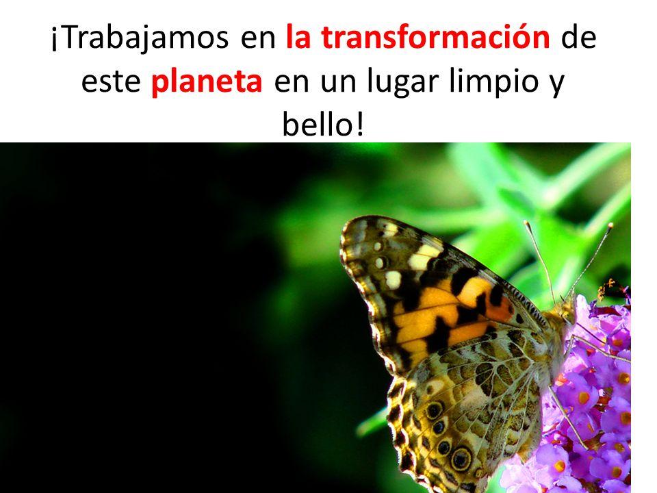 ¡Trabajamos en la transformación de este planeta en un lugar limpio y bello!