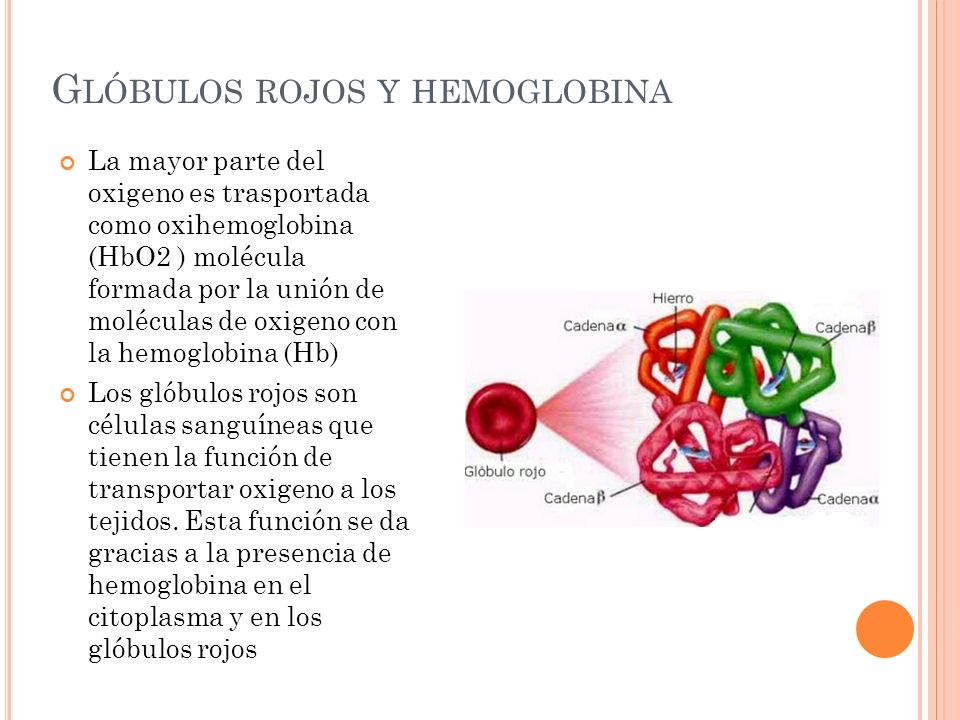 Glóbulos rojos y hemoglobina