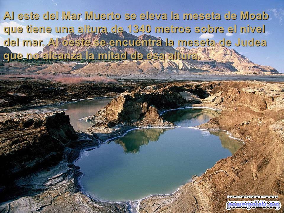 Al este del Mar Muerto se eleva la meseta de Moab que tiene una altura de 1340 metros sobre el nivel del mar.