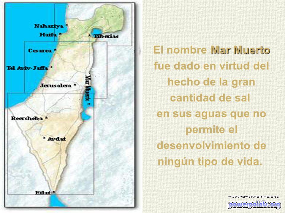 El nombre Mar Muerto fue dado en virtud del hecho de la gran cantidad de sal