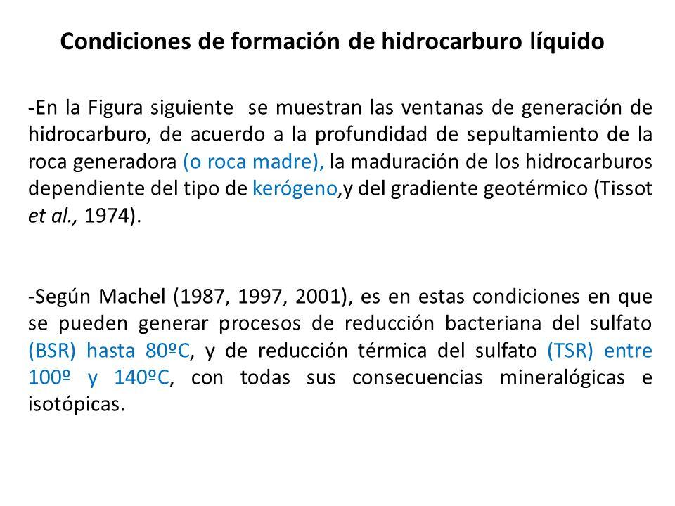 Condiciones de formación de hidrocarburo líquido
