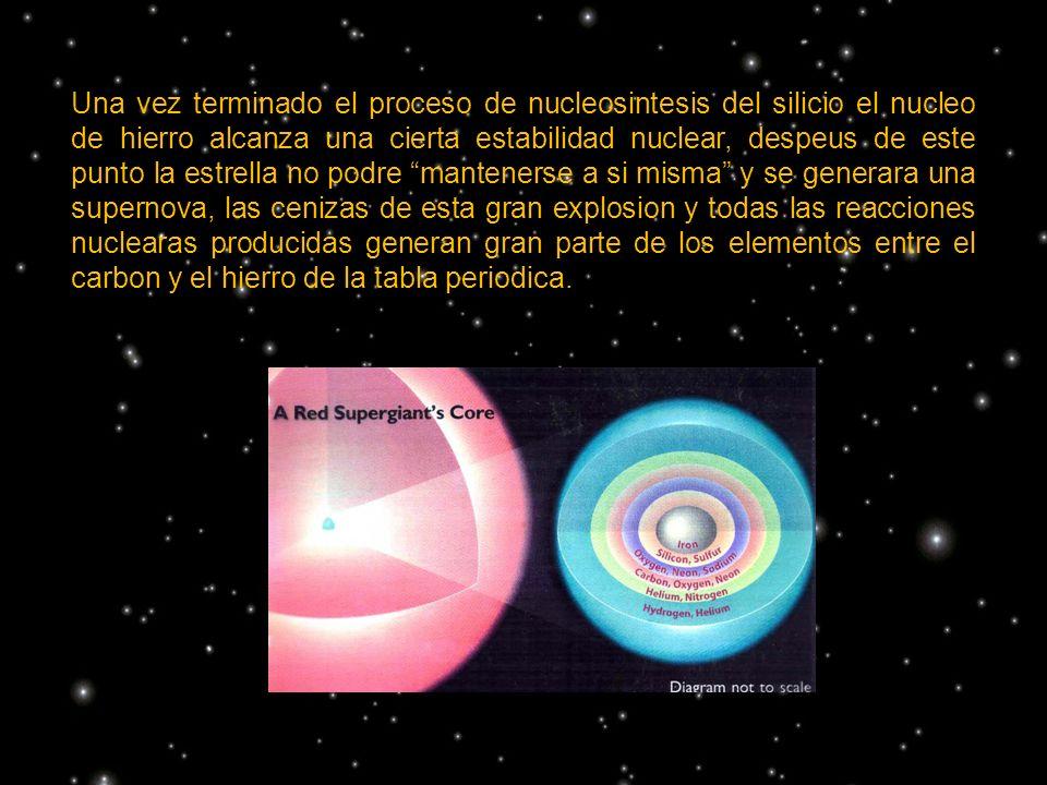 Una vez terminado el proceso de nucleosintesis del silicio el nucleo de hierro alcanza una cierta estabilidad nuclear, despeus de este punto la estrella no podre mantenerse a si misma y se generara una supernova, las cenizas de esta gran explosion y todas las reacciones nuclearas producidas generan gran parte de los elementos entre el carbon y el hierro de la tabla periodica.