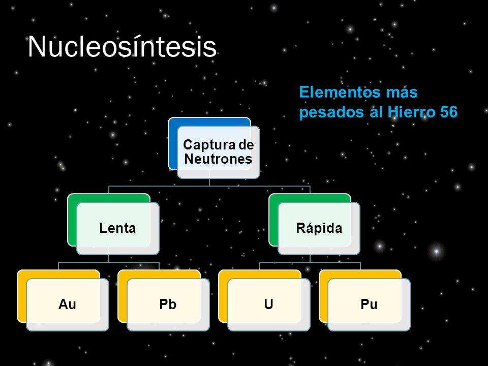 Nucleosíntesis Elementos más pesados al Hierro 56 Captura de Neutrones