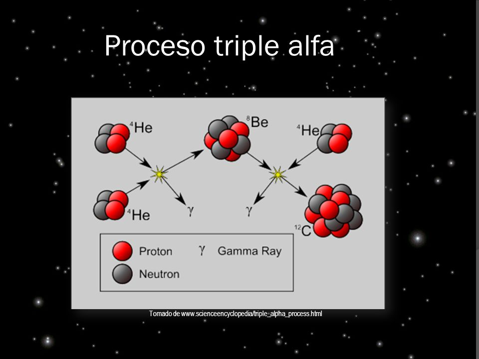 Tomado de www.scienceencyclopedia/triple_alpha_process.html