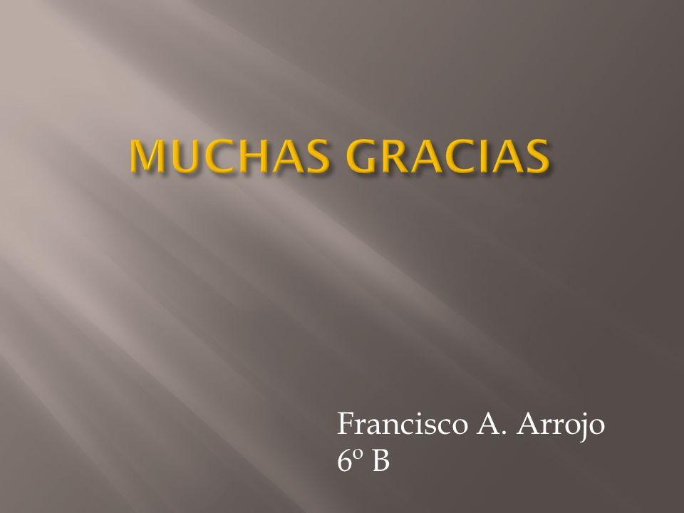 MUCHAS GRACIAS Francisco A. Arrojo 6º B