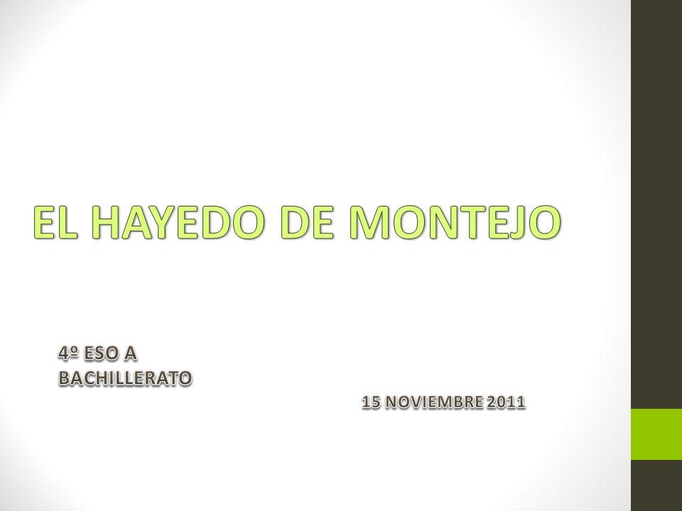 4º ESO A BACHILLERATO 15 NOVIEMBRE 2011
